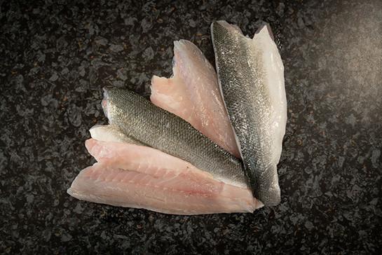 Sea bass fillets2