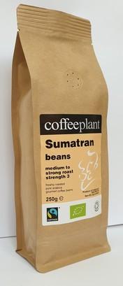 Sumatran beans bb1