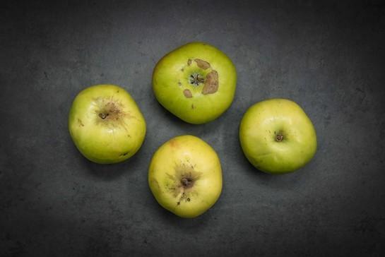Apples british bramley cooking  loose x 4%29