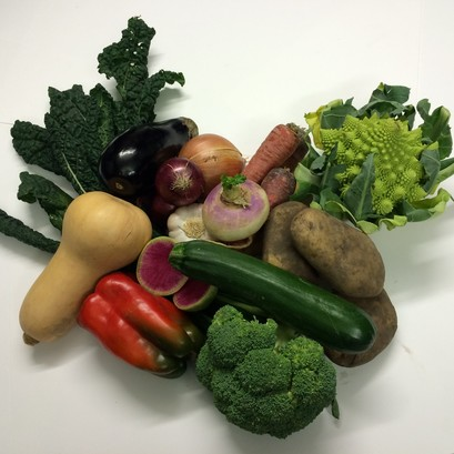 Fundamentals veg