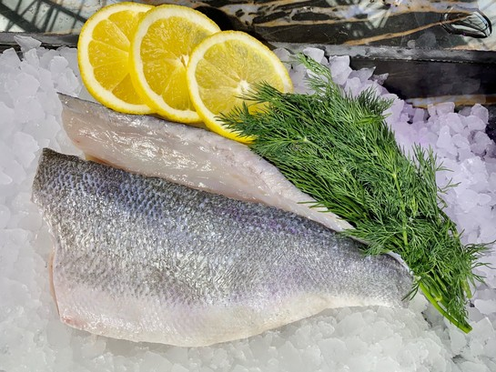 Sea bream fillet or bass resized