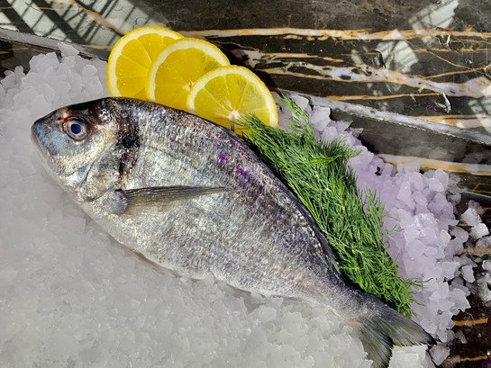 Sea bass of bream resize