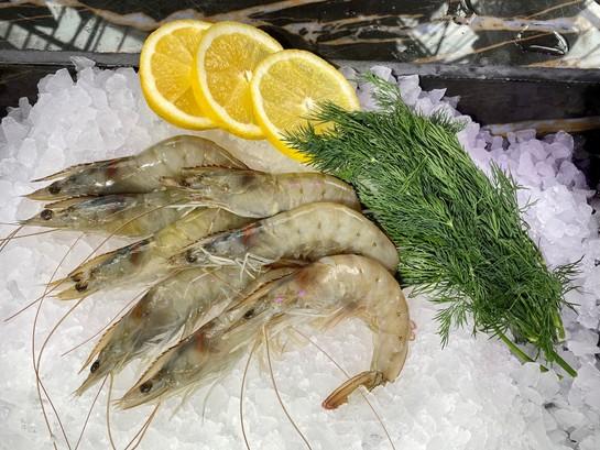 Vanames prawns resized