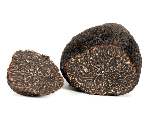 Truffles perigord